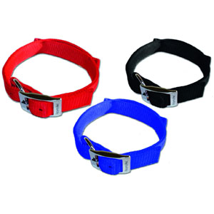 Dog Control Halsband Basic L (51-60 cm x 30 mm)