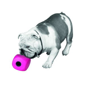 Buster Cube Snack Ball - 11 cm