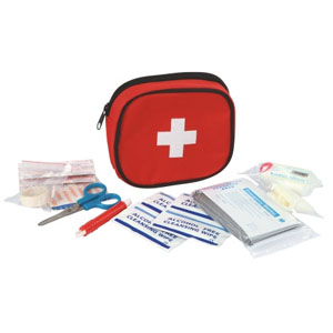 First Aid Bag For Dogs