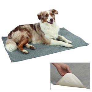 Anti Slip Carpet - 58 x 44 cm
