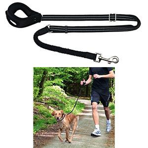 DogActivity Jogging Leash